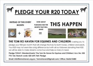 Tom Ro Haven R20 Pledge