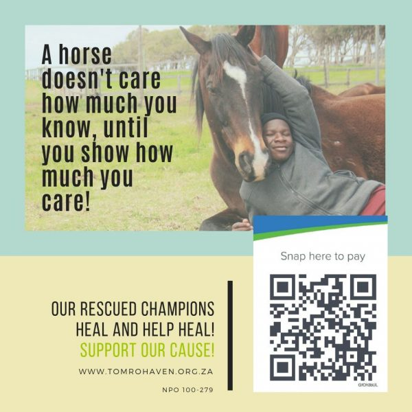 A Horse Doesn't Care
