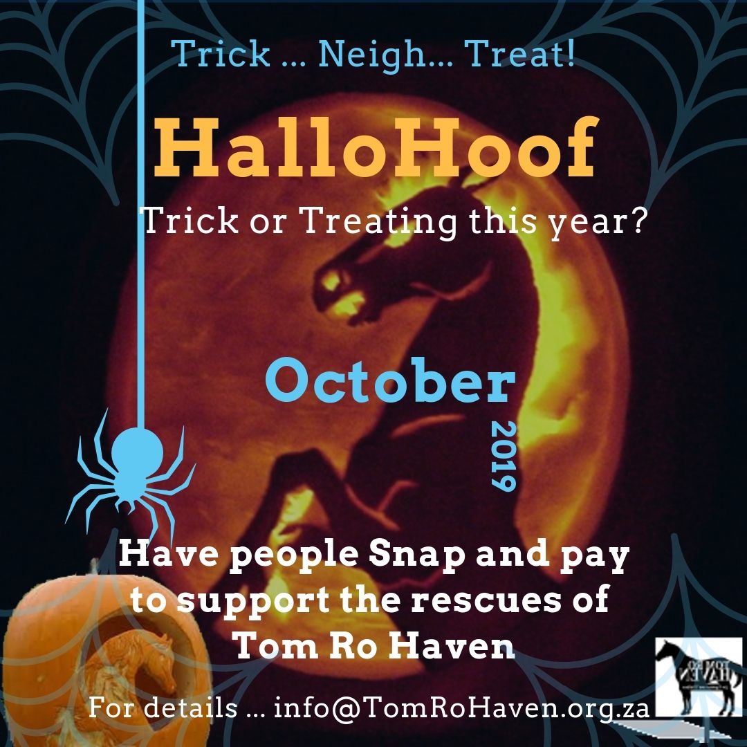 HalloHoof Trick or Treat 2019